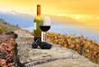 Glass of red wine on the terrace vineyard in Lavaux region, Swit