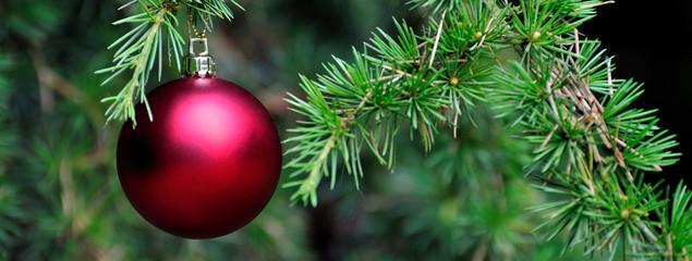 Boule rouge dans un arbre de Noël