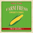 Vintage farm fresh sweet corn poster
