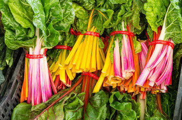 Bunches of fresh Swiss Chard at the market