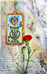 Rainbow,red carnation and wandering