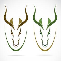 Vector image of an head impala and horns.