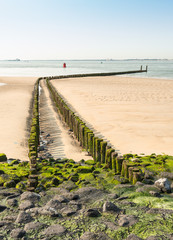 Wooden breakwater on a Dutch beach