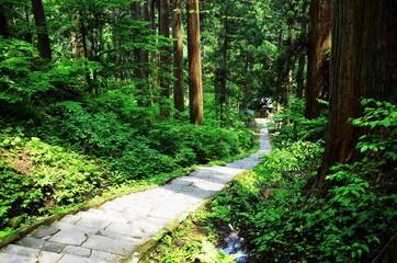羽黒山出羽神社の参道