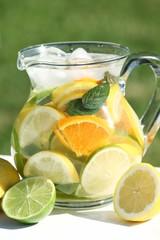 Jug with fresh fruit lemonade in a garden