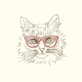 Pen and ink illustration of cool cat in red sun glasses