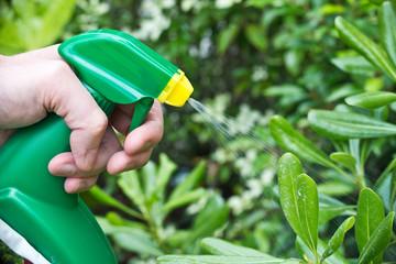 Vaporiser des plantes dans un jardin