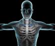 Corpo umano uomo raggi x clavicola scheletro