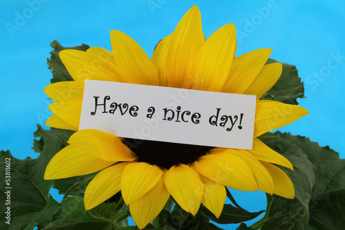 Have a nice day note on sunflower
