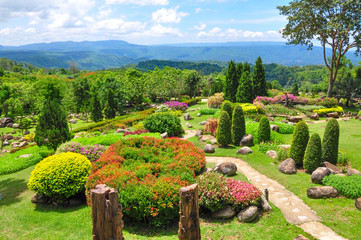 Beautiful garden of colorful flowers on hill