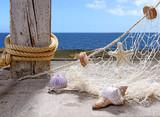 Fototapety Fischernetz mit Meeresschätzen