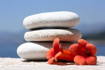 Pebble Stones with Orange Flowers
