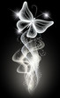 Smoke and butterfly