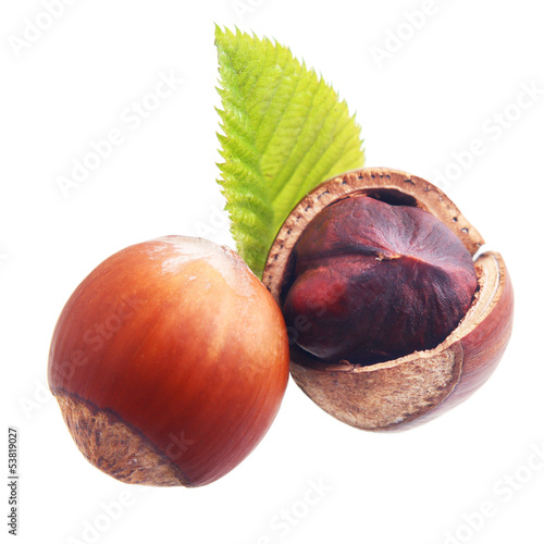 Hazelnuts isolated on white background.
