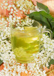 Herbal infusion of Elder or Sambucus blossoms