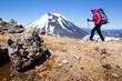 New Zealand mountain trekking