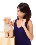 Asian woman feeding poodle