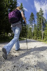Nordic-walking in mountains