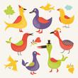 Cute birds. Cartoon set