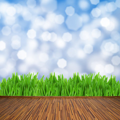 wooden planks with green grass and blue background