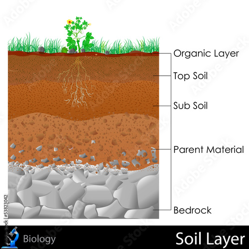 Layer of Soil