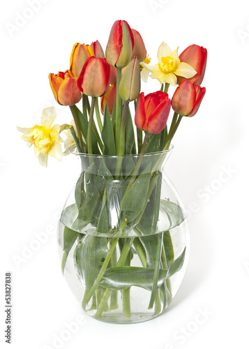 Fotobehang Narcis tulips and narcissus flowers in a glass vase