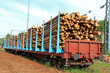 Wood in Railcars