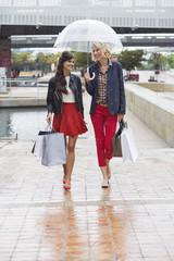 Female friends walking with shopping bags