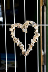 Heart shape made from sea shells hanging on a window
