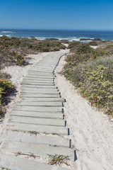 Boardwalk leading towards the beach