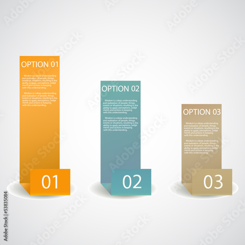 set of infographic options banner