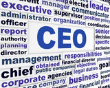 CEO business words concept