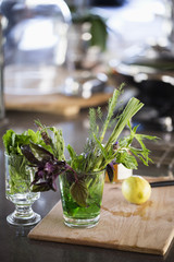 Herbs in a glass