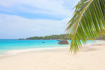 Beach Anse Lazio on the island of Praslin, Seychelles