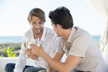 Two male friends toasting with wine