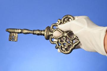 Vintage Antique Skeleton Key