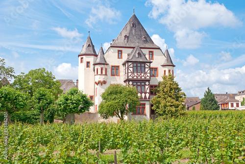 Weingut Schloss Schönborn in Geisenheim am Rhein