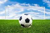 Fototapeta soccer ball on green grass field
