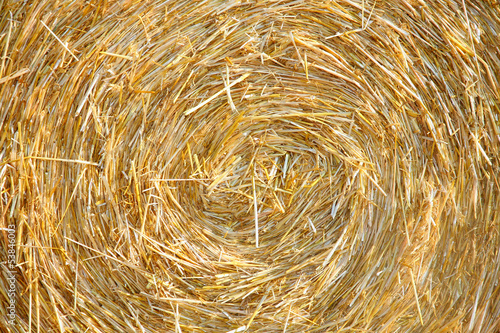 Detials close up shot of Wheat Haystack in farmer field