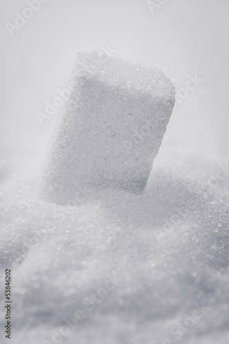 grains and sugar cubes