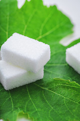 sugar cube on leaf