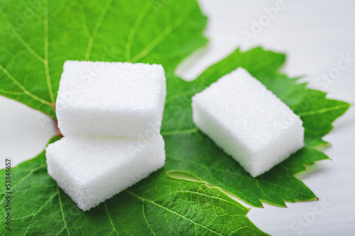 sugar cube on leaf