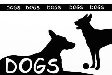 slogan cani