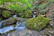 Mountain stream among green stones