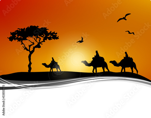 Wüstenkarawane Kamele