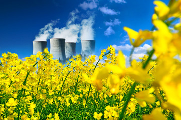 Nuclear plant in canola field