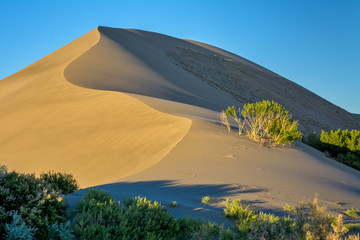 Sand dune at sunrise and blue sky