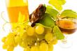 grappe de raisins et vin blanc