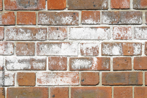 Efflorescence salts on surface of brick wall