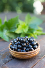 Blackcurrants in bowl